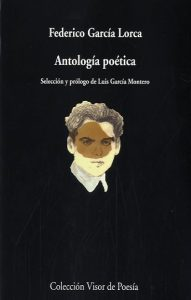 antologia-poetica-9788498958362